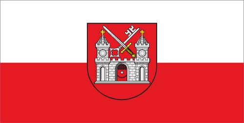 Tartu linna lipp